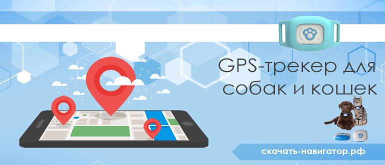 GPS-трекер для собак и кошек