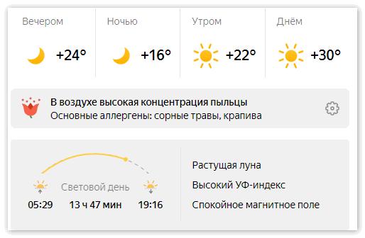 Погода на день с сайта Яндекс Погода